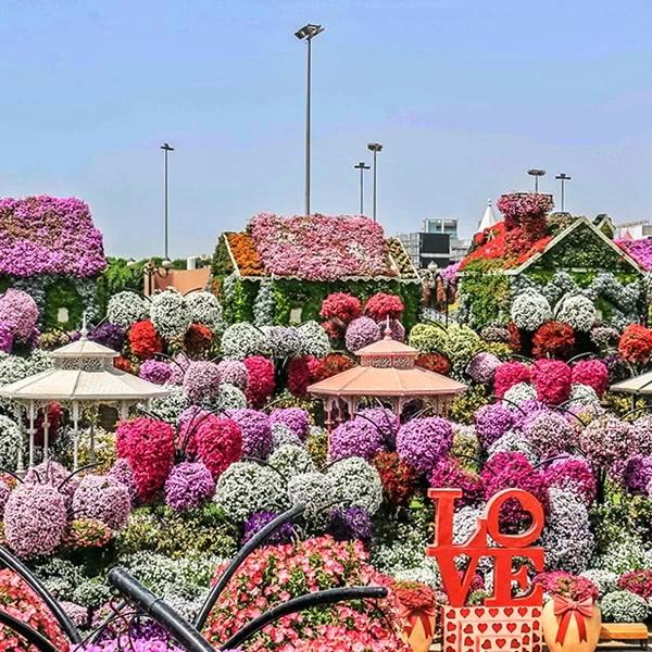 Promo Paket Tour Dubai 6d5n Murah 2020 Amwindo Tour Travel